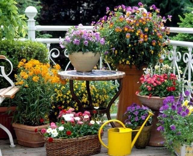 Festeggiamo la primavera scoprendo i migliori fiori per arredare